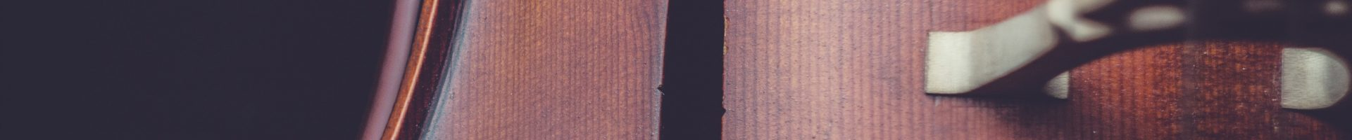 Concerto a Villadose – Estate con gli archi